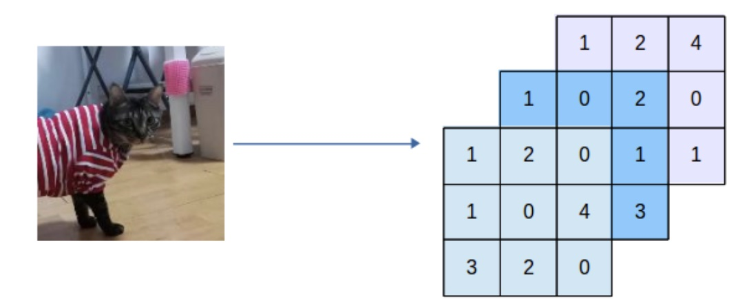 image_process